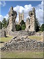 TL8564 : Abbey Ruins, Bury St Edmunds by David Dixon