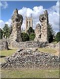 TL8564 : Abbey Ruins, Bury St Edmunds by David Dixon