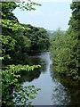 SK2380 : River Derwent from Leadmill Bridge by Andrew Hill