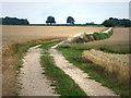 SU6514 : Pitt Hill Lane by Chris Gunns
