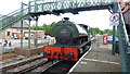 SK3899 : Mardy Monster at Elsecar Heritage Railway by Richard Cooke