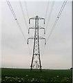 SK7646 : Pylons by Andrew Tatlow