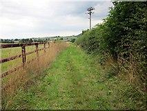 SJ5050 : The Sandstone Trail by Jeff Buck