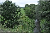 ST0207 : Cullompton : The River Culm by Lewis Clarke
