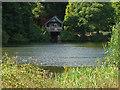 SU9941 : Winkworth Arboretum lake by Alan Hunt