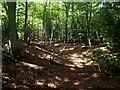 SU6988 : Earthwork, Park Corner by Des Blenkinsopp