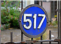 J3973 : No 517 Upper Newtownards Road, Belfast (2013-3) by Albert Bridge