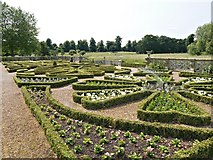 SP2556 : Charlecote, The Parterre by David Dixon