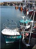 NT6779 : Coastal East Lothian : New Kid in Town by Richard West