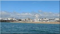 TQ3103 : Brighton Beaches & Wheel by Paul Gillett