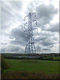 SX4563 : Power lines crossing grassland south of Bere Ferrers by David Smith