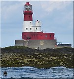 NU2438 : Seal and lighthouse by DS Pugh