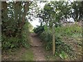 SX4566 : Footpath to High Cross by David Smith
