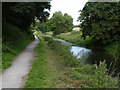 SK8933 : Grantham Canal east of Vincent Bridge by Alan Murray-Rust