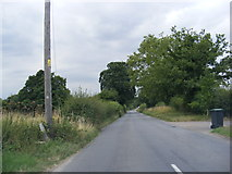 TM1678 : Low Road, Oakley by Adrian Cable