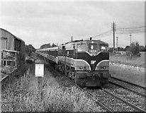N3245 : GAA special train at Castletown by The Carlisle Kid