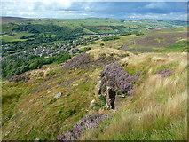 SE0511 : Scout Quarries, Marsden by Humphrey Bolton