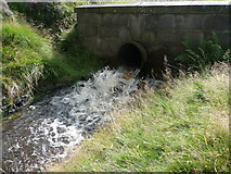SE0511 : Water flowing into the head of the Blackmoorfoot conduit by Humphrey Bolton