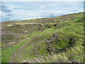 SE0611 : Disused quarry by Humphrey Bolton