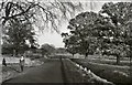NZ0882 : Road by Crofts, Bolam by Chris Morgan