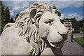 SK8932 : Harlaxton Lion by Richard Croft