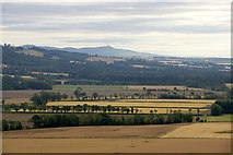 NO2528 : Carse of Gowrie at Inchmartine from the air by Mike Pennington