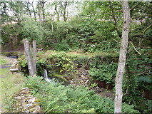 SK2492 : Agden Dike, small waterfall by Peter Barr