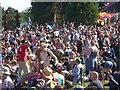 SY0898 : East Devon : Escot Park - Beautiful Days by Lewis Clarke