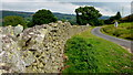 NY5018 : Drystone wall by the lane to Hullockhowe by Jonathan Billinger