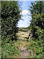 TM1083 : Footpaths to Druids Lane & B1077 Church Road by Adrian Cable