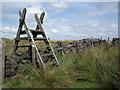SD6919 : Ladder stile by Stephen Burton