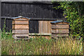 TL3451 : Bee Hives, Home Farm, Wimpole Hall, Cambridgeshire by Christine Matthews