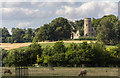 TL3351 : Grazing Sheep, Home Farm, Wimpole Hall, Cambridgeshire by Christine Matthews
