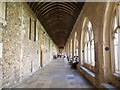 SU8504 : Cloisters, Chichester Cathedral by Paul Gillett