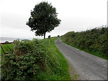 C3322 : Road at Corcannon by Kenneth  Allen