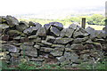 SE0051 : View over wall beside Skipton Moor Lane at Jenny Gill by Roger Templeman
