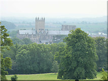 ST5545 : Wells Cathedral by Rick Crowley