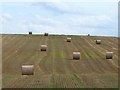NZ3802 : Straw bales on Bratchet Hill by Oliver Dixon
