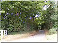 TG2804 : Woolers Lane, Framingham Pigot by Adrian Cable