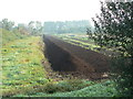 ST4743 : Peat ready for collection, Westhay Moor by Edwin Graham