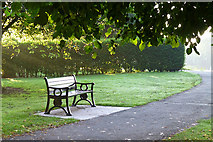 """SK4833 : """"Shelley's bench"""" by David Lally"""