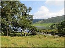 NT2320 : St Mary's Loch by Richard Webb