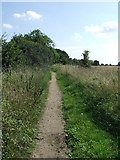 TL9030 : Track Leading To Sergeant's Orchard by Keith Evans