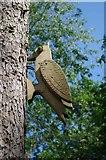 TL8425 : Wooden Woodpecker by Glyn Baker