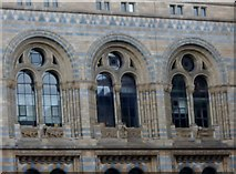 TQ2679 : Windows, Natural History Museum, Exhibition Road SW7 by Robin Sones