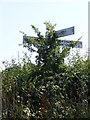 TM2890 : Roadsign on Upgate Street by Adrian Cable