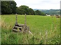 NZ0019 : Old ladder stile on the Tees Railway Walk by Oliver Dixon