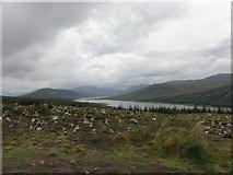 NH1804 : Loch Loyne by Mat Tuck