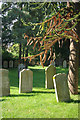 TL1662 : Hail Weston Churchyard by Stephen McKay