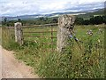 NO4797 : Old stone gateposts by the Firmounth Road by Stanley Howe